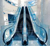 안전에 의하여 부드럽게 하는 박판으로 만들어진 엘리베이터 유리