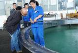 Cuscinetto di vuotamento del rullo/anello di vuotamento/azionamento trasversali di vuotamento per i pezzi meccanici della costruzione del carrello elevatore della gru dell'escavatore