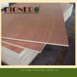 Chapas de madera de roble blanco para muebles con pegamento E0