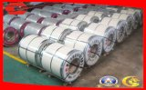 Galvanisiertes Steel mit Aluminum Foil Coil Better Than Sandwish Panel