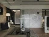 Декоративные акриловые панели стены, листы Faux белые мраморный, отсутствие камня бактерий искусственного