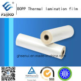 Film de stratification thermique BOPP + EVA pour impression offset: 15 + 09mm brillant