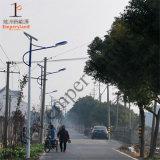 15W IP68 CER RoHS Solar-LED Straßenlaterne(DZS-001)