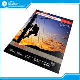 Grapa color de impresión del folleto folletos