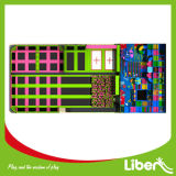 Het roze Mooie Park van de Trampoline met de Bijlage van het Net van de Veiligheid