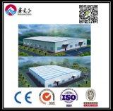 Estructura de acero personalizados de alta calidad Almacén (BYSS019)