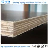 4X8構築の型枠具体的な形式の合板のボード