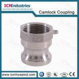 Accoppiamenti filettati del Camlock della spina 3 della polvere dell'acciaio inossidabile ''