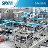 Automatische abgefüllte Mineralwasser-Flaschenabfüllmaschine/Zeile/Gerät