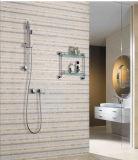 Ливень ванной комнаты нержавеющей стали ручной установил с утверждением водяной знак