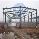 5000 Tonnen landwirtschaftliche Startwert- für ZufallsgeneratorKaltlagerungs-mit Stahlkonstruktion