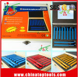 Изготовление Китая наклоненных карбидом битов инструмента с SGS