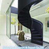 Qualitäts-erstklassiger schwarzer Poliergranit-Innenpflasternjobsteps/Treppe