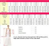 Blosse Spitze-Brautballkleider weg vom Schulter-Champagne-Futter-Hochzeits-Kleid 2017 G1704