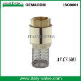 Klep van de Controle van de Filter van de hoogste Kwaliteit de Messing Gesmede (av-cv-5003)