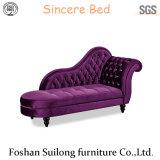 Calesa moderna superior Ys7022 de los muebles
