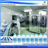 Mineralwasser-Zeile Produktionszweig Wasserpflanze beenden