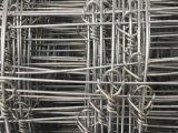 Fabbrica direttamente che vende la rete fissa del pascolo fatta in Cina