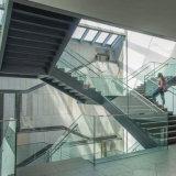 Etapas de pedra/escada de etapa/escadaria grande com trilhos