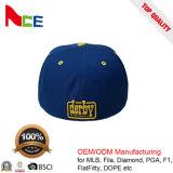 O painel da fábrica 6 do ODM do OEM bordou o chapéu cabido Flexfit do Mens do logotipo 3D