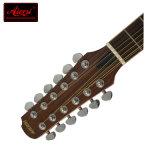 Guitare électrique acoustique solide de pouce 12-String Dreadnaught du principal 41