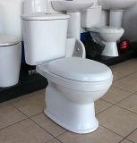 Washdown Deux pièces de toilette en céramique pour salle de bain
