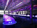 一義的なRGBW UFO SMD水晶魔法のStarballの段階効果ライト