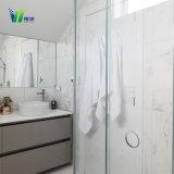 목욕탕 문 기계설비 경첩을%s 가진 유리제 /Shower 룸 유리를 위한 박판으로 만들어진 강화 유리