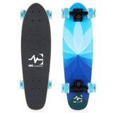 "Skateboard-Minikreuzer-volles Ahornholz bildete 26*7.5 "" Y003-1"