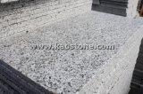 Pulido baratos gris/gris granito G640 de baldosa/pared