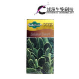 Capsule di dimagramento dell'estratto della pianta del cactus efficaci