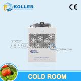 Kühlraum für das Halten frisch von der Frucht/von der Blume/vom Gemüse