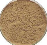 Extrato de grãos de café verdeácido Chlorogenic 327-97-9 10% 20% 50% puro Extrato Natural