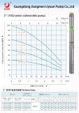 Pompa ad acqua sommergibile solare del pozzo profondo di monofase 50Hz 60Hz di Liyuan
