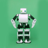 De in het groot OEM DIY Robot van de Druk van het Stuk speelgoed van het Jonge geitje Onderwijs 3D