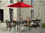 /Rattan al aire libre/silla y vector del paño de Texilene de los muebles del jardín/del patio/del hotel fijó (HS 2017C &HS712878DT)