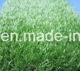 Высокое качество Techsol Зеленый 5b, растворитель зеленый 3 (по конкурентоспособной цене)