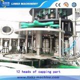 Volledig Automatisch Mineraalwater die en het Afdekken Machine bottelen