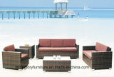 Vime do pátio do jardim/mobília novos sofá do Rattan (TG-022)