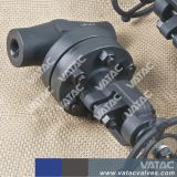 A105/F316/F304 ha forgiato la valvola di globo d'acciaio Cl150&Cl300&Cl600