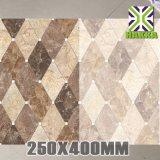 Mattonelle di ceramica superiori della parete delle mattonelle 25X40 della parete della porcellana