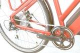 最もよい販売によって隠される電池電気都市バイク(TDB04Z)