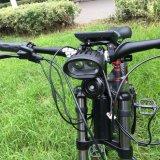 Bici grande eléctrica vendedora caliente de la potencia 5000W E de la bici 2017