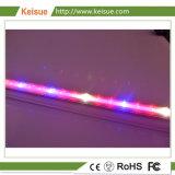 Keisue Venta caliente hidropónicos LED de luz de las plantas que crecen