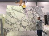 Het Marmeren Italiaanse Witte Marmer Statuarrietto van het Sneeuwwitje