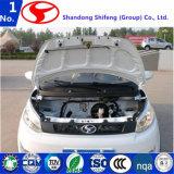 Alta qualità cinese con automobile elettrica di prezzi di fabbrica la mini da vendere/automobile elettrica/veicolo elettrico/automobile/mini automobile/veicolo utilitario/automobili/automobili elettriche/mini elettrico