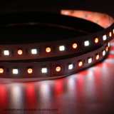 5つのカラーRgbww LEDの滑走路端燈5050SMD