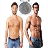 남성 증진 및 체중 감소를 위한 Yohimbine HCl 분말 65-19-0