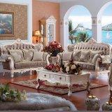يعيش غرفة أريكة من [فوشن] أريكة أثاث لازم مصنع (955)