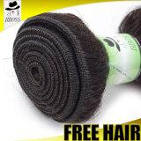 Catalogue des prix indien normal traité par 100% de cheveux humains